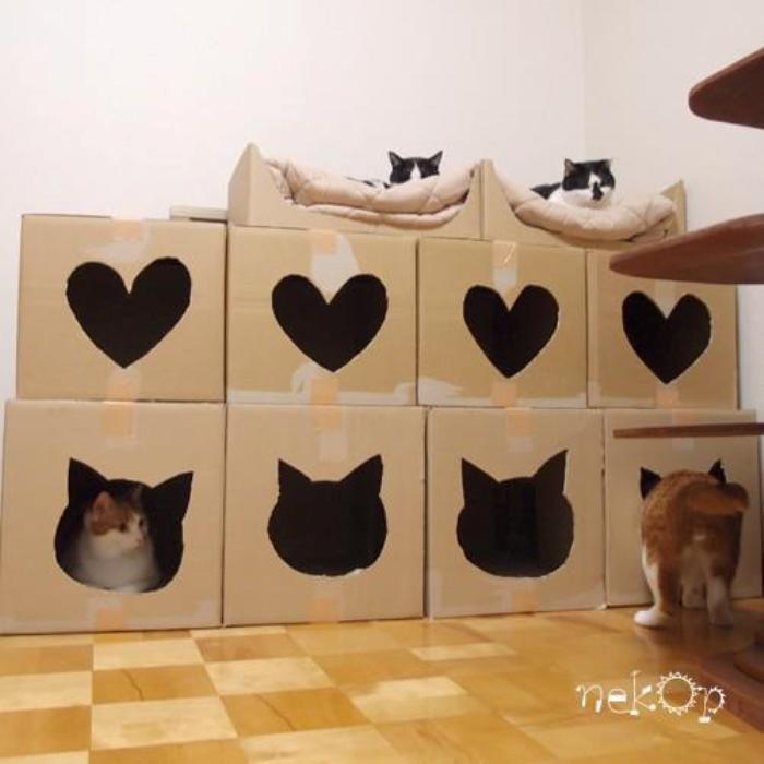 faça-uma-casinha-para-o-seu-gato-com-caixa-de-papelão