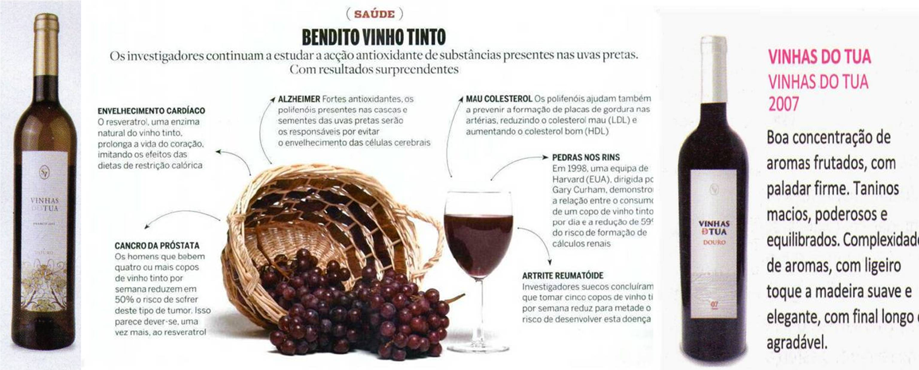 beneficios-do-vinho