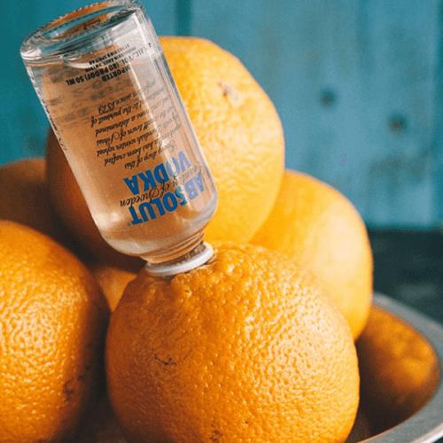 mini vodka laranja embriagada
