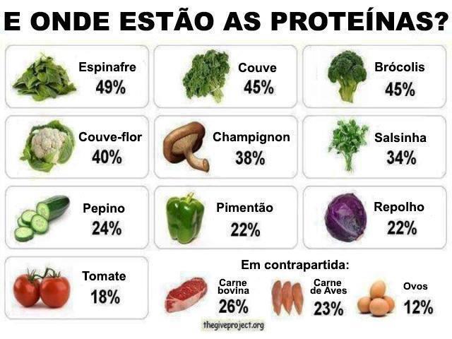 proteina dos vegetais legumes