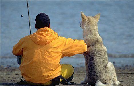 Canine Fisherman