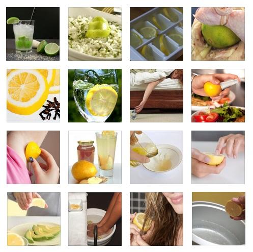50 motivos para amar o limão