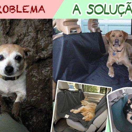 cachorro-na-lama-e1317174186700 cópia