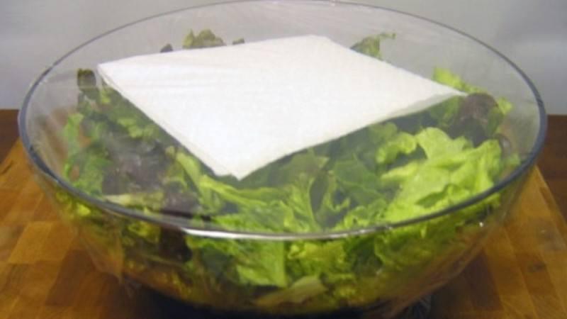 Cum-sa-pastrezi-salata-verde-proaspata-1