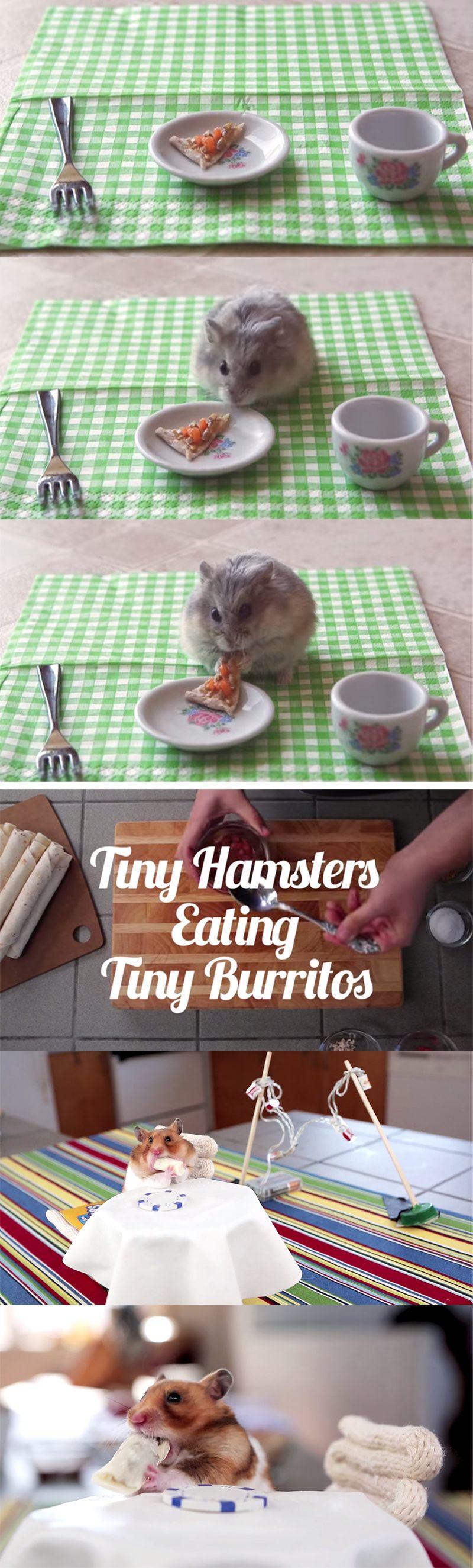 comendo mini comidinhas