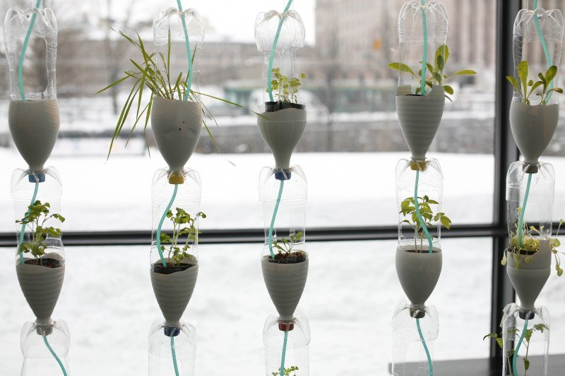 windowfarms-fi_plants-bottles_credit_antti-ahonen