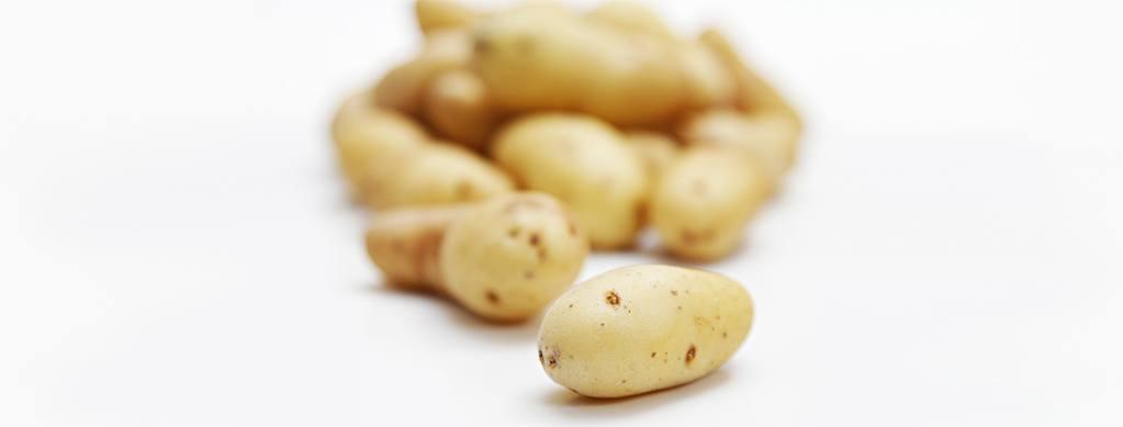 IMG_7136-Fingerling-potatoes