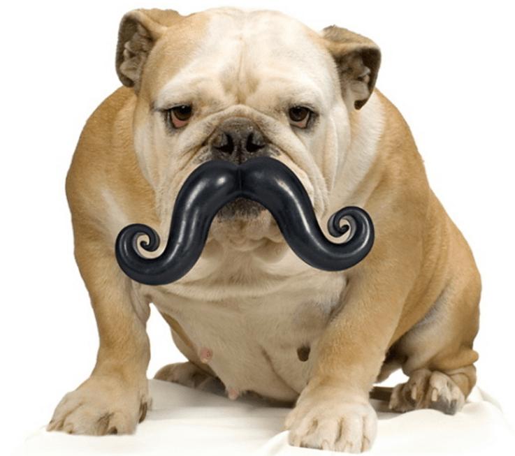 briquedo bigode