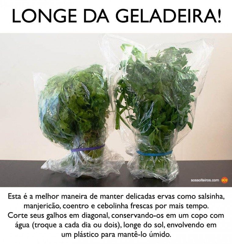 ervas-conservar-longe-da-geladeira-760x800