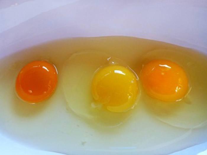 egg-yolk-colors-400×3001