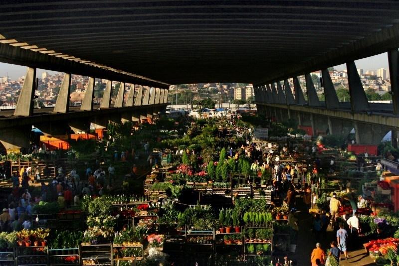 Soluções e Transportes, http://www.solucoestransportes.com.br/blog/protesto-de-caminhoneiros-afeta-abastecimento-de-frutas-na-ceagesp/