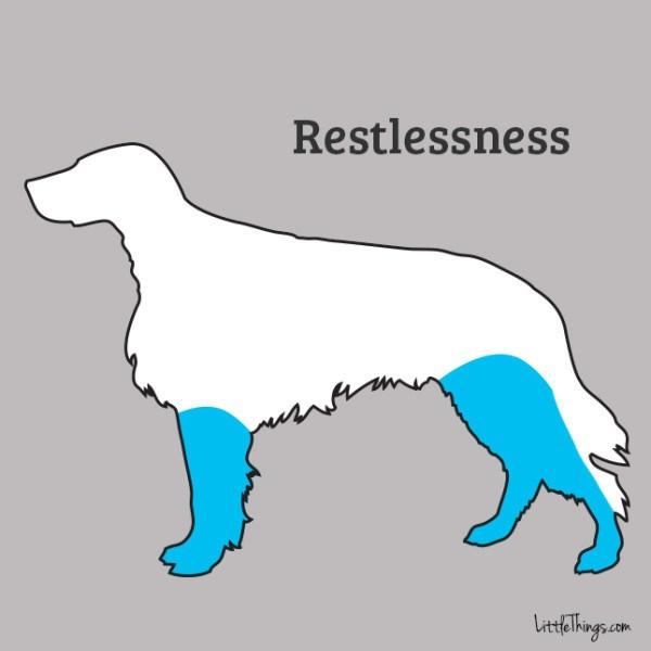 restlessness_sossolteiros