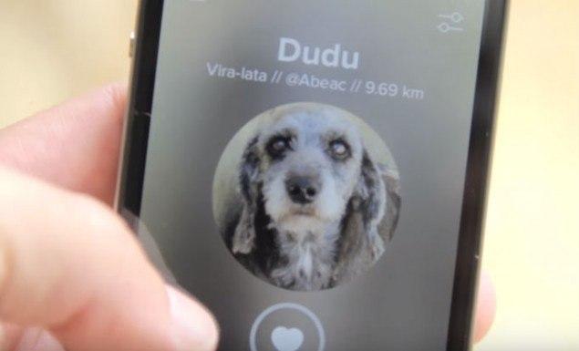 audote_app2_sossolteiros