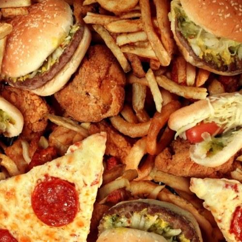 dieta_gordura_sossolteiros.jpg-1000×691