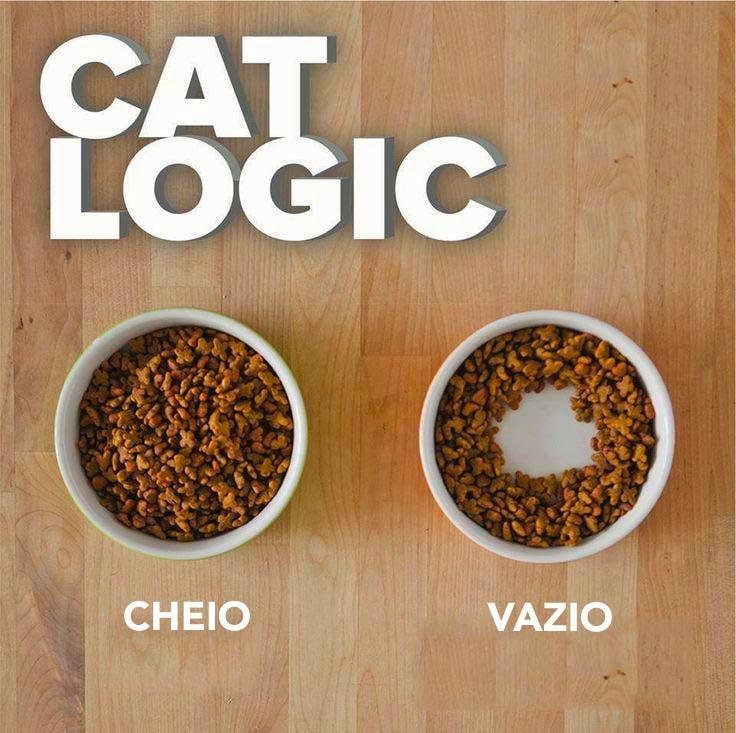 Fonte: Tudo Interessante,http://www.tudointeressante.com.br/2016/03/por-que-os-gatos-deixam-comida-na-beirada-do-pratinho.html