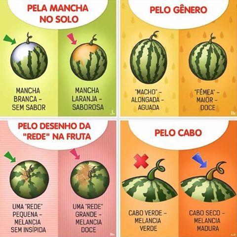 Resultado de imagem para melancia como escolher
