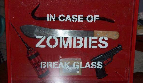 Zombie Survival Crew, http://zombiesurvivalcrew.com/2013/07/z-poc-survival-10-things-you-should-know/