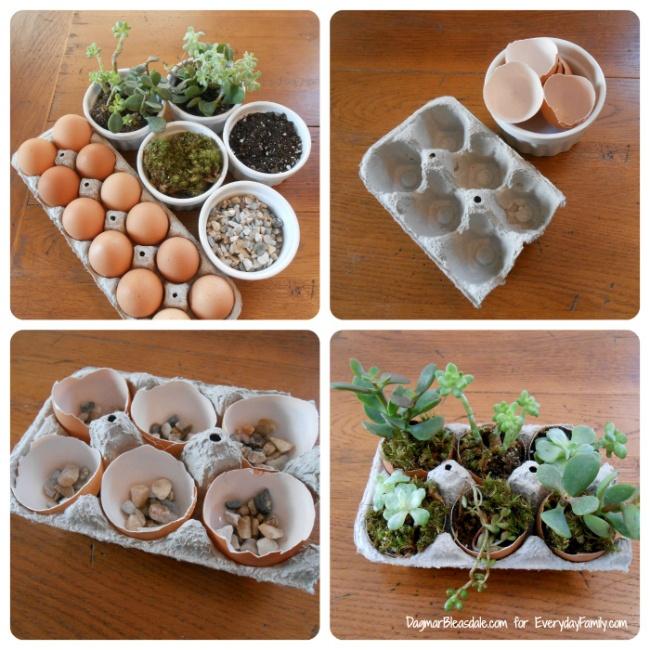 Everyday Family, http://www.everydayfamily.com/blog/diy-succulent-garden-in-egg-carton/
