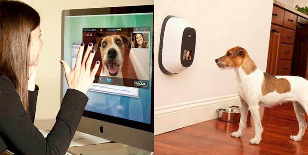 Techly, http://www.techly.com.au/2015/01/23/petchatz-lets-talk-furry-friend-anytime/