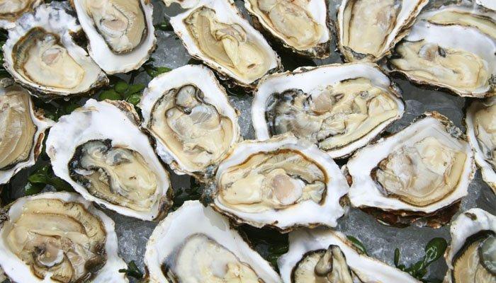 Dia de Musculação, http://www.dicademusculacao.com.br/os-5-beneficios-das-ostras-para-saude/