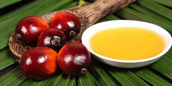 Greenme, https://www.greenme.com.br/alimentar-se/alimentacao/1493-oleo-de-palma-um-substituto-ecologico-pode-salvar-as-florestas