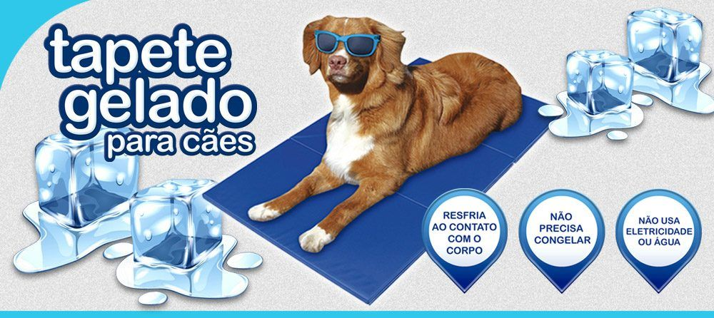 Jambo Pet, http://www.jambopet.com.br/