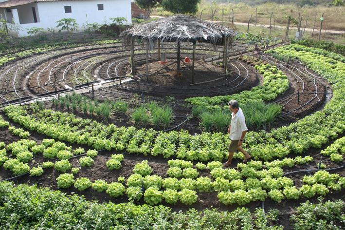 Paraíba Total, http://www.paraibatotal.com.br/noticias/2013/05/13/99697-projeto-de-producao-agroecologica-gera-renda-e-melhora-vida-de-familias-paraibanas