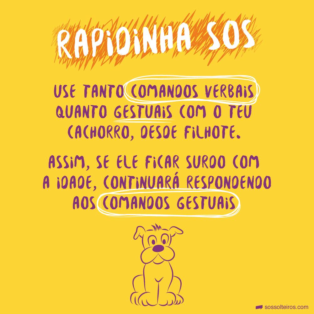 sos solteiros-comando cachorro-01