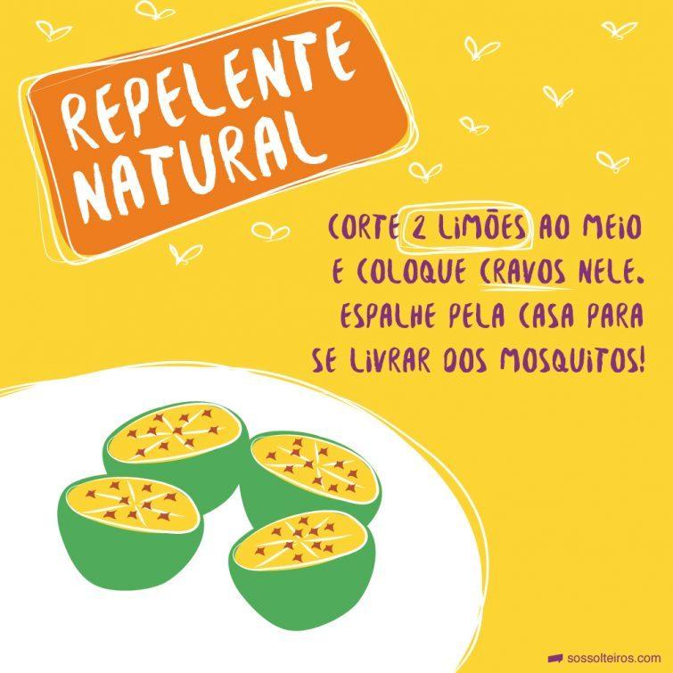 sos solteiros-limao repelente natural-01