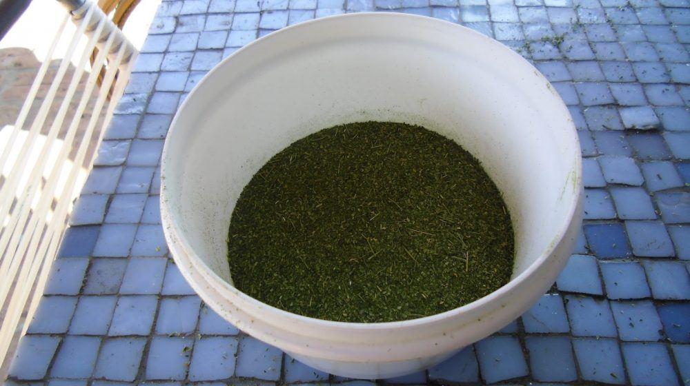 Projeto Moringa, http://projetomoringa.blogspot.com.br/p/blog-page.html