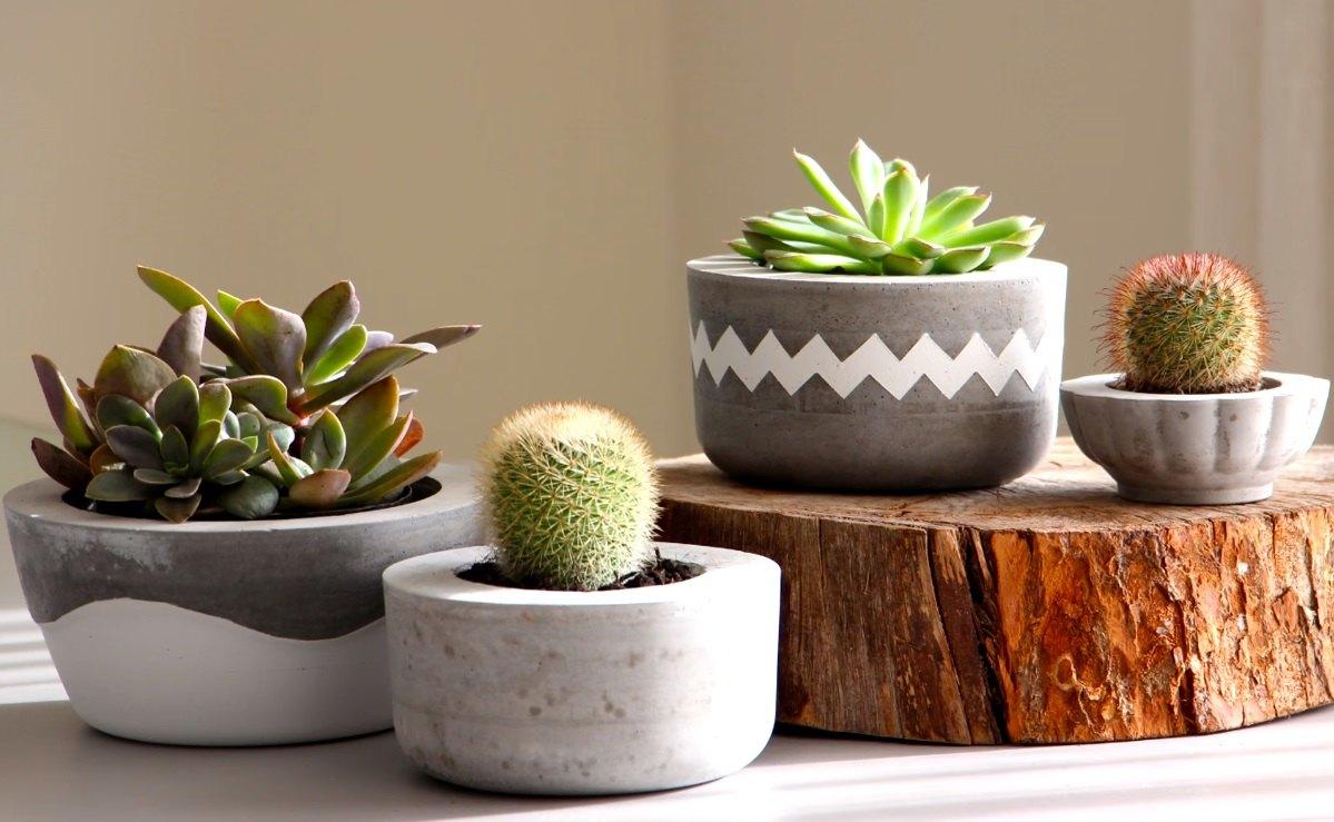 Como Fazer Vasos De Cimento Em Casa E Mais Facil Do Que Imagina