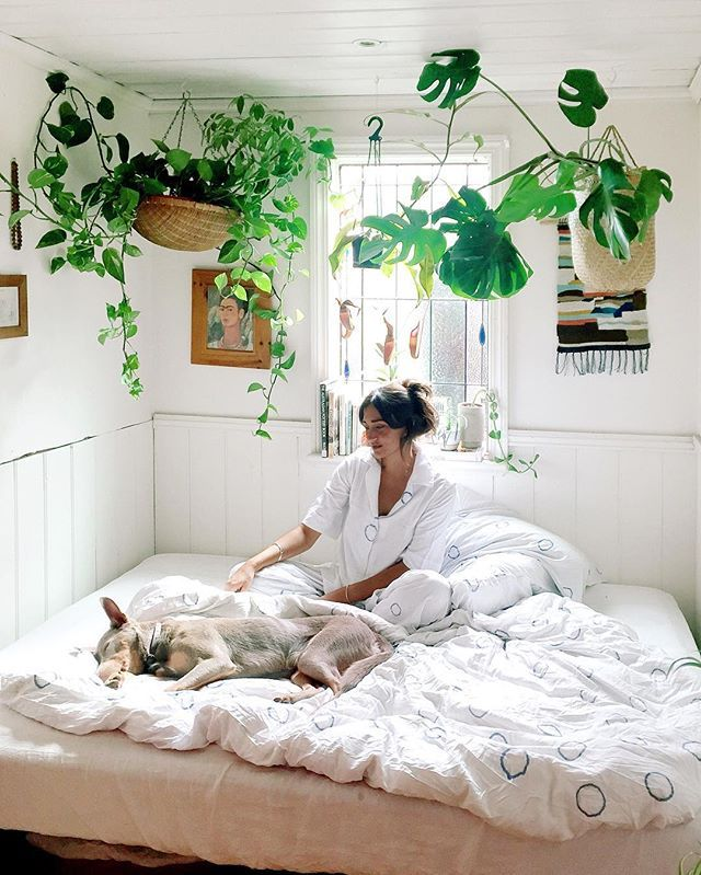 Pinterest, https://uk.pinterest.com/explore/hanging-plants/