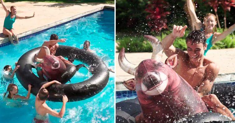 touro inflavel piscina
