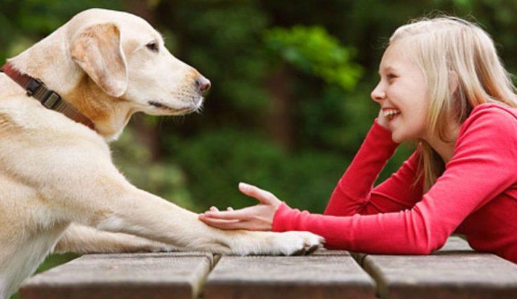 conversar_cachorro_sossolteiros
