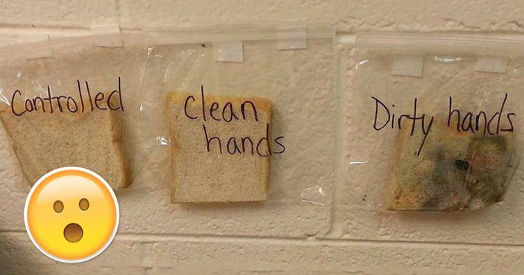 mão sujas experimento