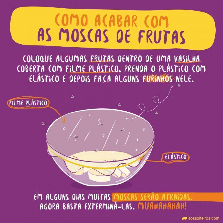 sos-solteiros-4moscas-na-fruta