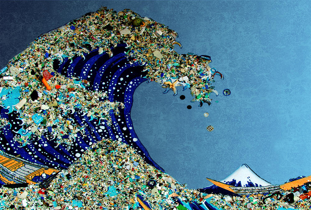 Blue ocean, https://blueocean.net/plastic-ocean-pollution/