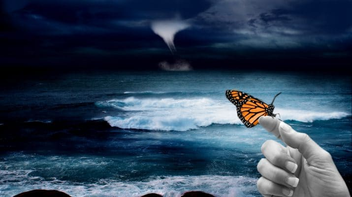 Lifescode, http://lifescodes.com/the-butterfly-effect/