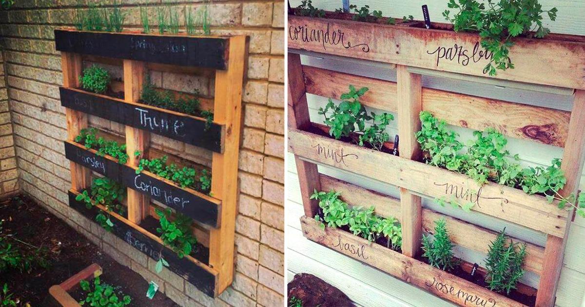 Horta No Pallet Como Fazer A Sua Pr 243 Pria Hortinha Vertical