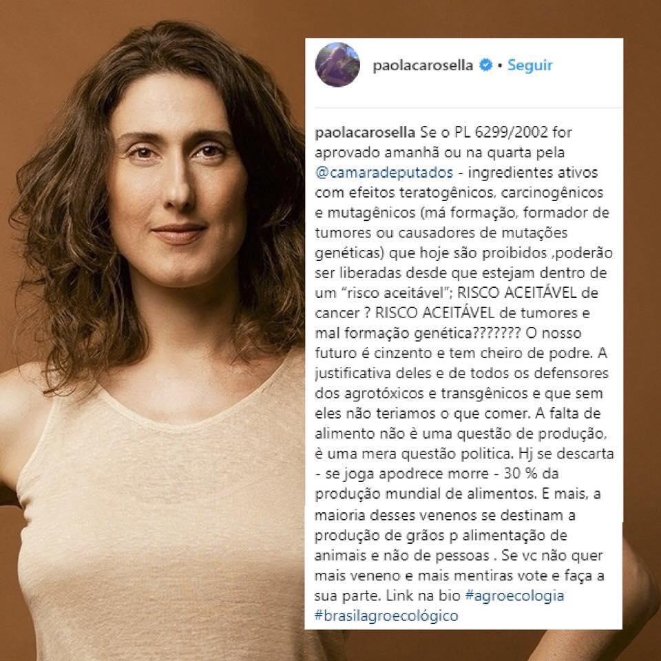 Paola Carosella - Facebook (Reprodução) por PorQueNão? - Facebook, https://www.facebook.com/porquenao.projeto/photos/a.1424459561154475.1073741828.1416808605252904/2025053404428418/?type=3&theater