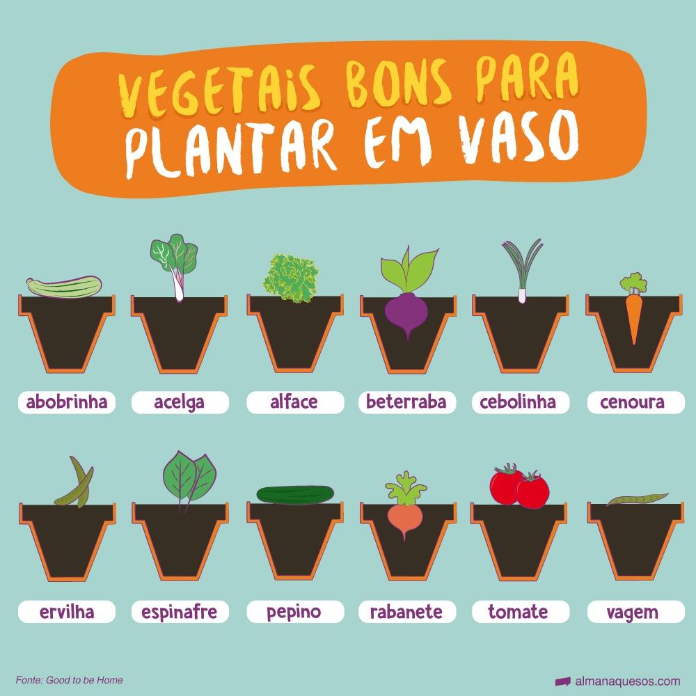Vegetais bons para plantar em vaso abobrinha acelga alface beterraba cebolinha cenoura ervilha espinafre pepino rabanete tomate vagem Fonte: Good to be Home