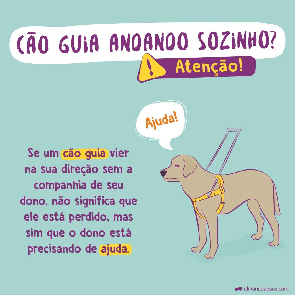 Cachorro guia andando sozinho? Atenção! Se um cão guia vier na sua direção sem a companhia de seu dono, não significa que ele está perdido, mas sim que o dono está precisando de ajuda.