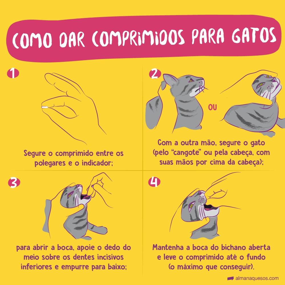 """Como dar comprimidos para gatos 1- Segure o comprimido entre os polegares e o indicador; 2-com a outra mão, segure o gato ( pelo """"cangote"""", ou pela cabeça, com suas mãos por cima da cabeça); 3-para abrir a boca, apoie o dedo do meio sobre os dentes incisivos inferiores e empurre para baixo; 4- Mantenha a boca do bichano aberta e leve o comprimido até o fundo ( o máximo que conseguir)."""
