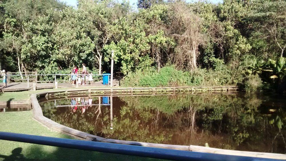 Passeios Baratos em SP, https://passeiosbaratosemsp.com.br/explore-os-sentidos-na-trilha-da-vida-no-parque-ecologico-do-guarapiranga/