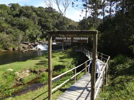 TripAdvisor, https://www.tripadvisor.com.br/LocationPhotoDirectLink-g1893364-d6761131-i123481872-Parque_Estadual_Porto_Ferreira-Porto_Ferreira_State_of_Sao_Paulo.html