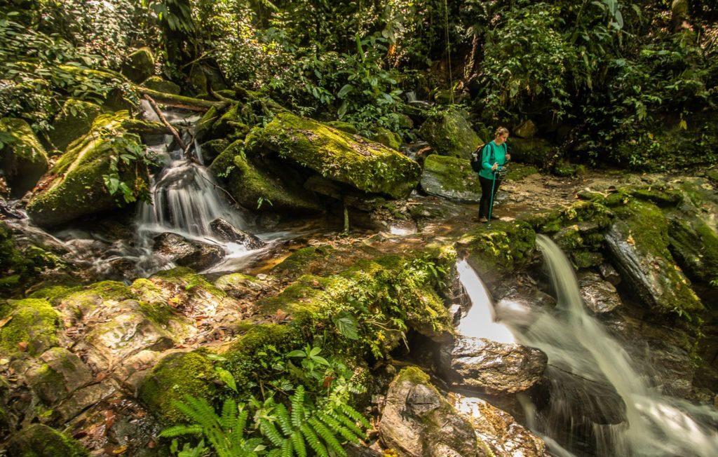 Expedição andando por ai, http://www.expedicaoandandoporai.com/2019/01/trilha-do-ouro-cachoeira-do-veado-a-mambucaba.html