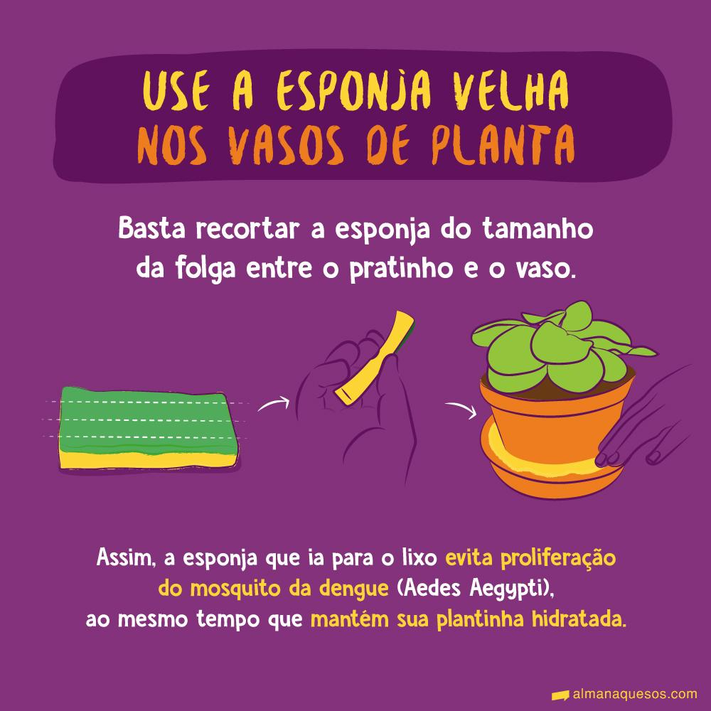 Use a esponja velha nos vasos de planta Basta recortar a esponja do tamanho da folga entre o pratinho e o vaso. Assim, a esponja que ia para o lixo evita proliferação do mosquito da dengue (Aedes Aegypti), ao mesmo tempo que mantém sua plantinha hidratada.